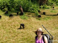 Alexandra with Chimps