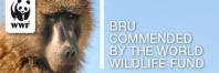 University of Cape Town's Baboon Research Unit commended by WWF