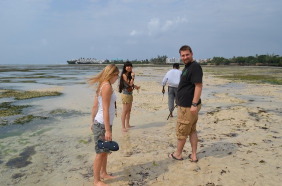 Some Handshake volunteers learn about marine life in Mombasa.