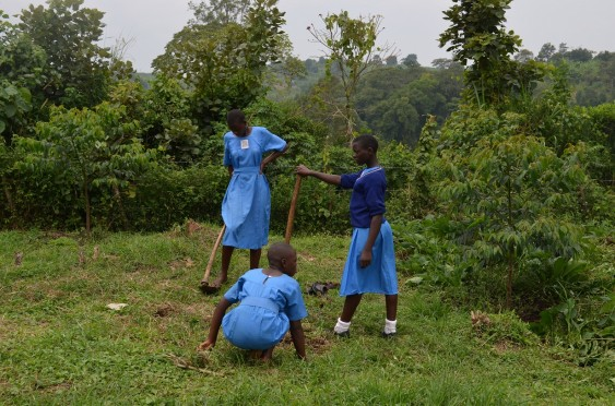 Kasiisi Primary School pupils working at the Kasiisi Porridge Project farm.