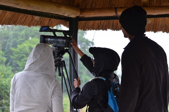 Volunteers capture footage of chimpanzees at Ngamba Sanctuary.